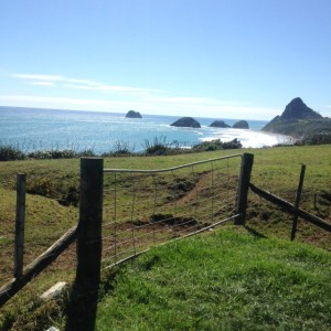 The view in New Plymouth is pretty nice
