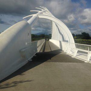 Te Rewa Rewa Bridge (NP)