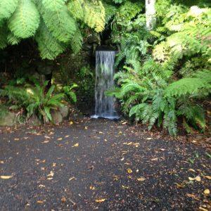 A waterfall in Pukekura Park (NP)